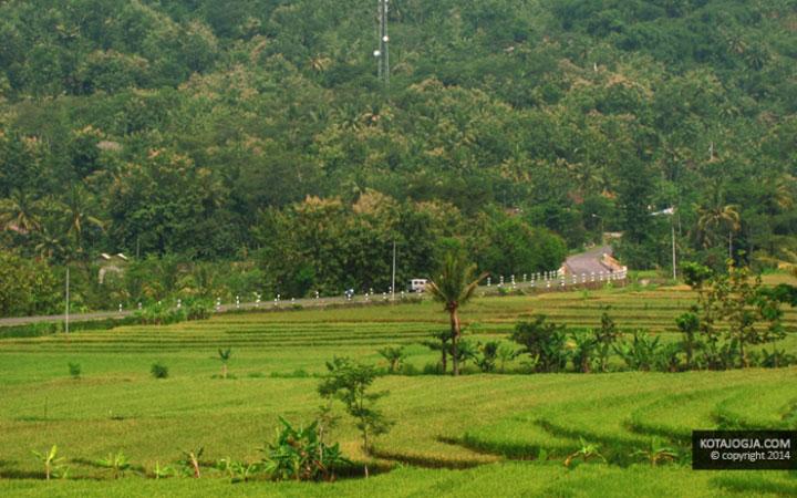 Desa pendowoharjo
