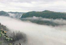 pagi hari di bukit panguk kediwung